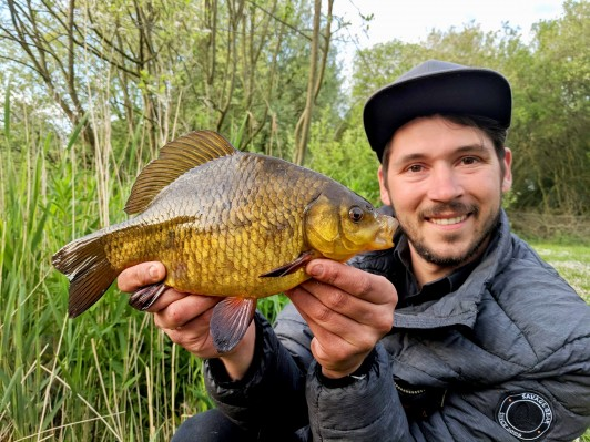 rocklands mere fishery crucian